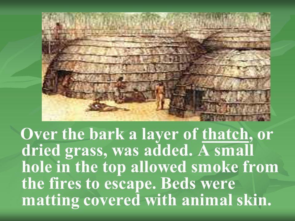 Over the bark a layer of thatch, or dried grass, was added