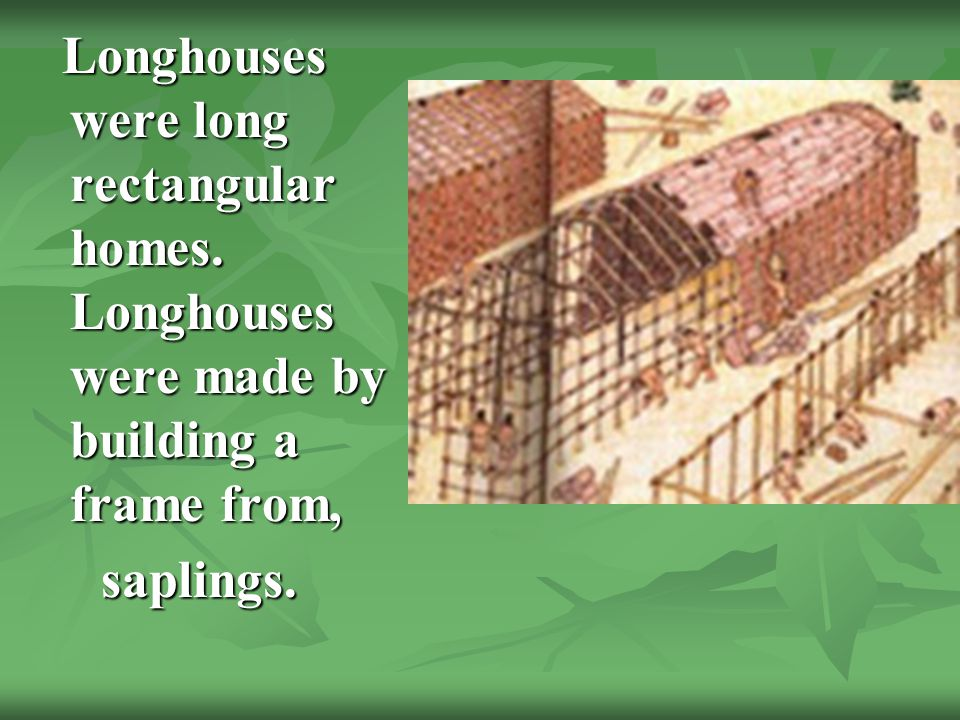 Longhouses were long rectangular homes