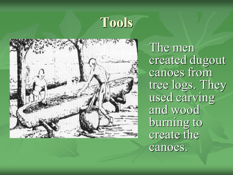 Tools The men created dugout canoes from tree logs.