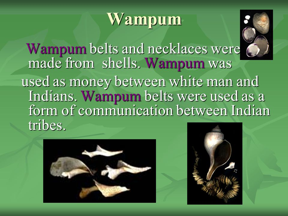 Wampum Wampum belts and necklaces were made from shells. Wampum was.