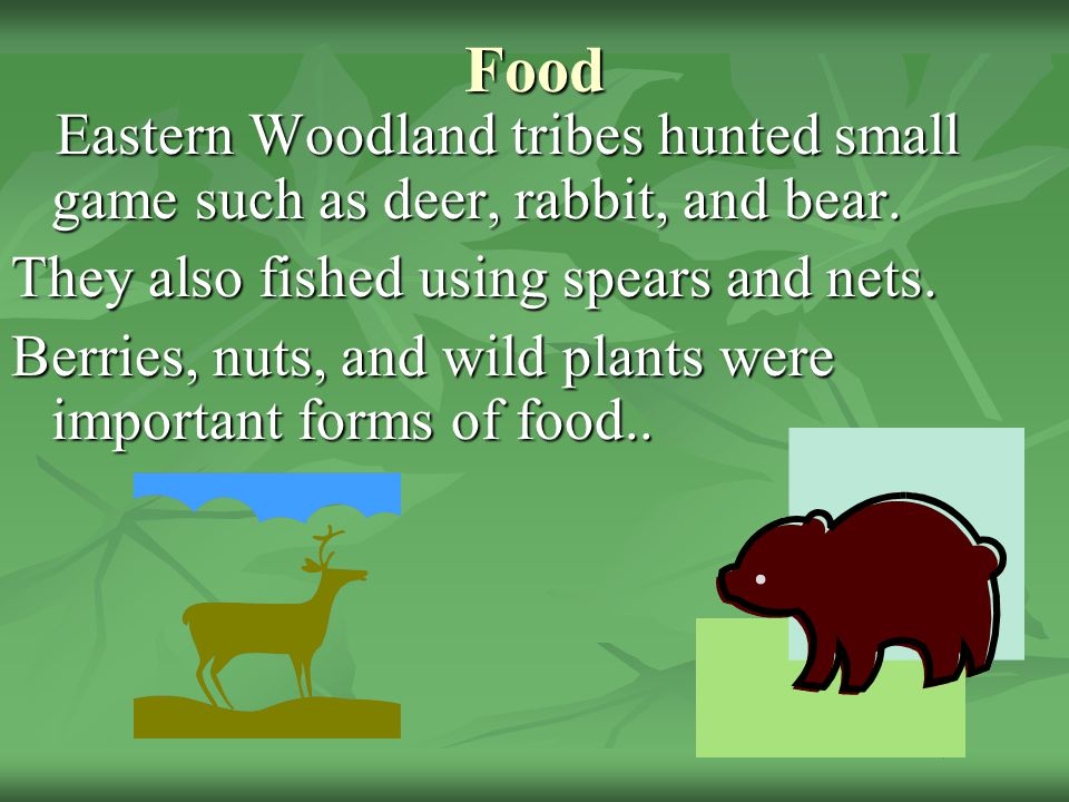 Food Eastern Woodland tribes hunted small game such as deer, rabbit, and bear. They also fished using spears and nets.