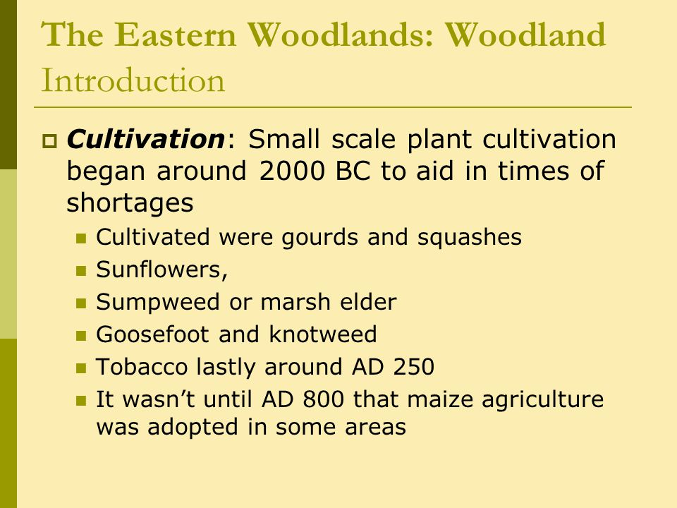 The Eastern Woodlands: Woodland Introduction