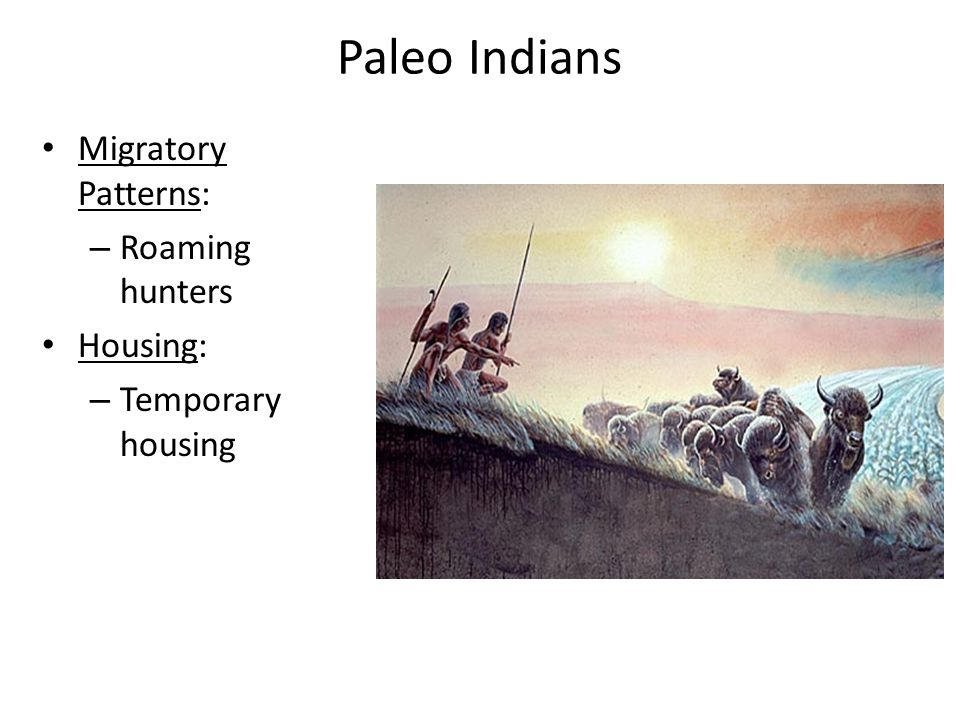 Paleo Indians Migratory Patterns: Roaming hunters Housing: