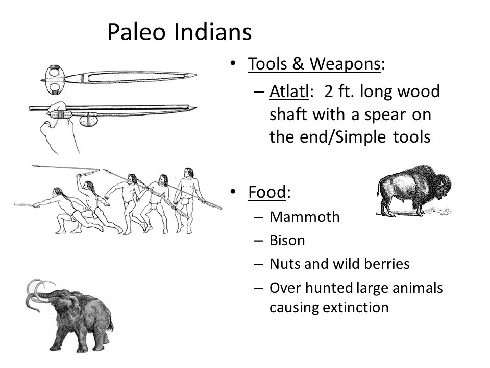 Paleo Indians Tools & Weapons: