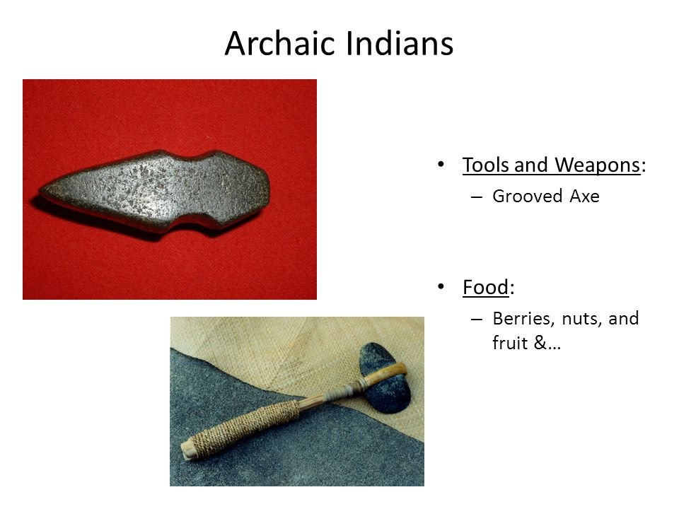 Archaic Indians Tools and Weapons: Food: Grooved Axe