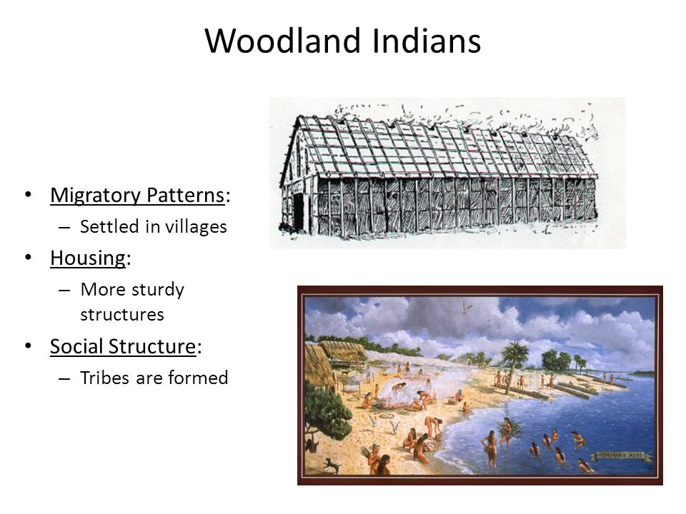 Woodland Indians Migratory Patterns: Housing: Social Structure: