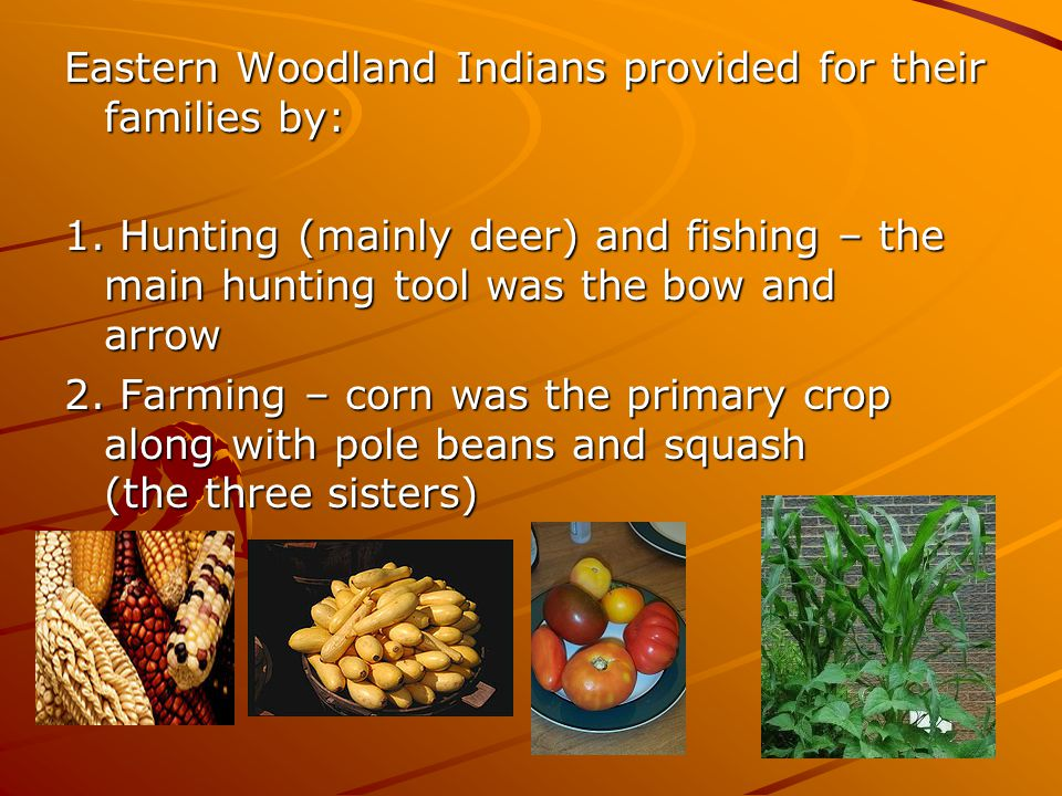 Eastern Woodland Indians provided for their families by: