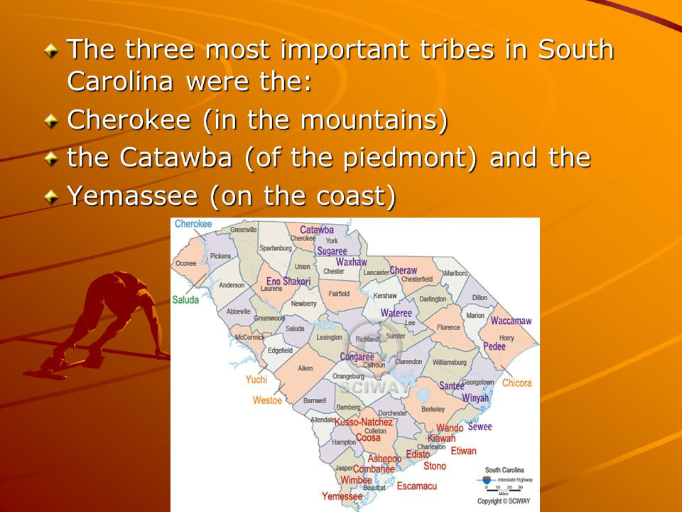 The three most important tribes in South Carolina were the: