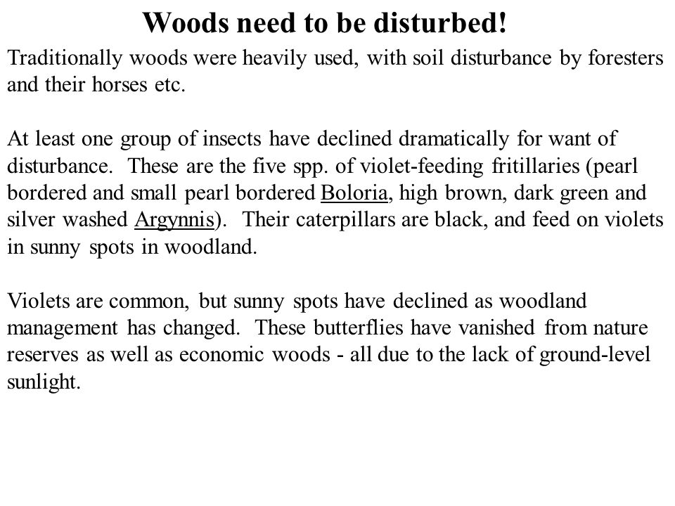 Woods need to be disturbed!