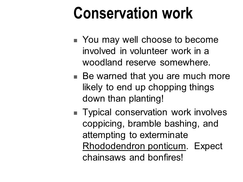Conservation work You may well choose to become involved in volunteer work in a woodland reserve somewhere.