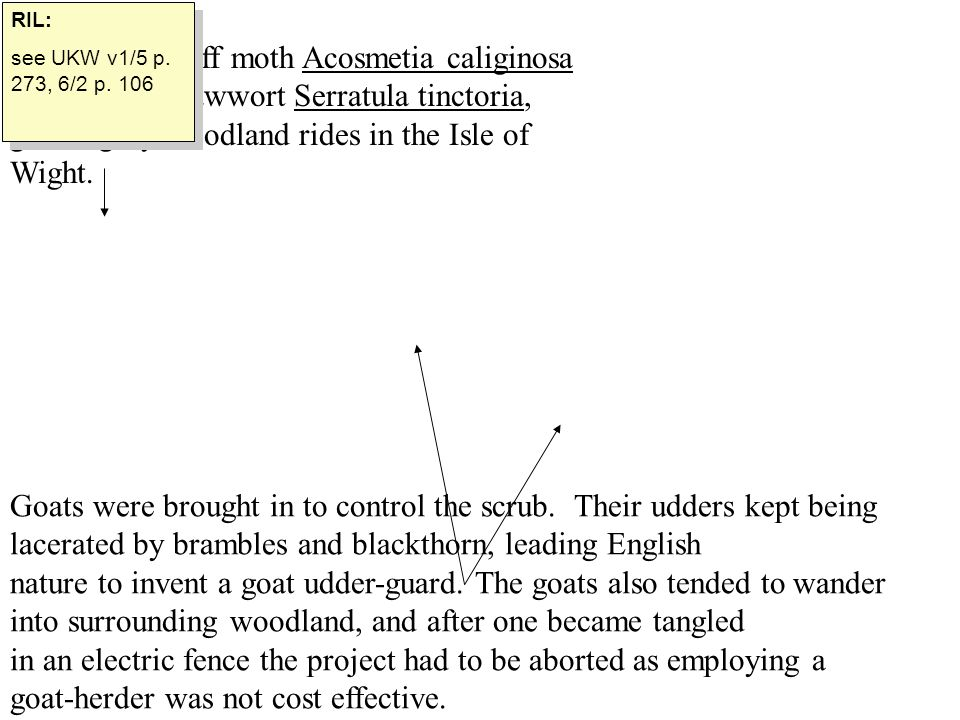 RIL: see UKW v1/5 p. 273, 6/2 p. 106.