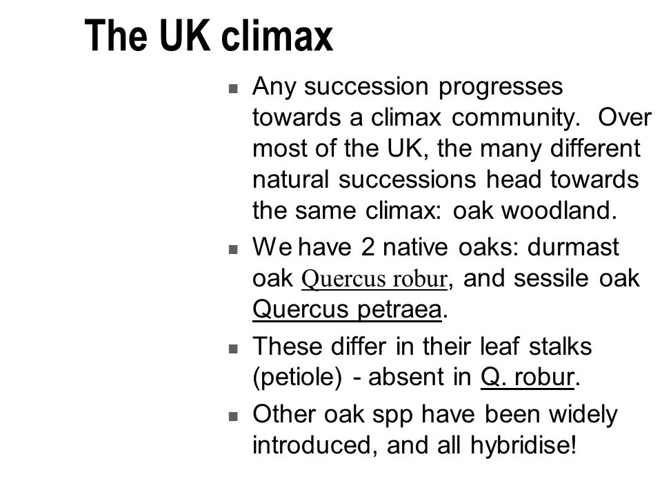 The UK climax