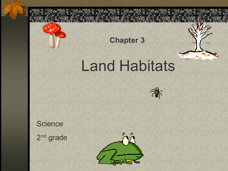Chapter 3 Land Habitats Science 2nd grade