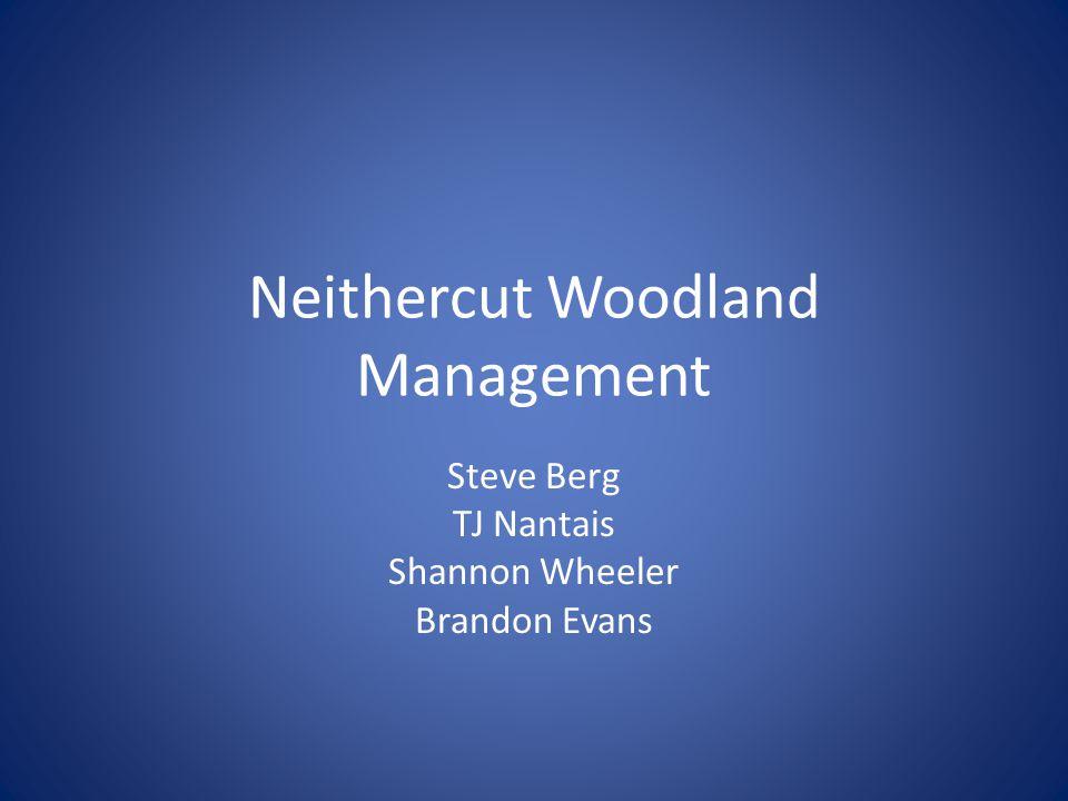 Neithercut Woodland Management