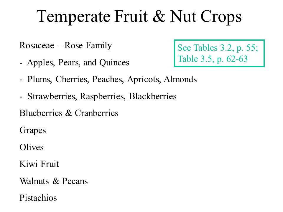 Temperate Fruit & Nut Crops