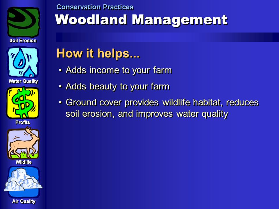 Woodland Management How it helps... Adds income to your farm