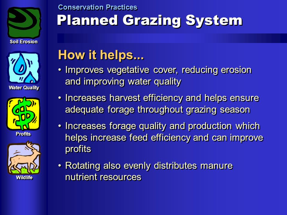 Planned Grazing System