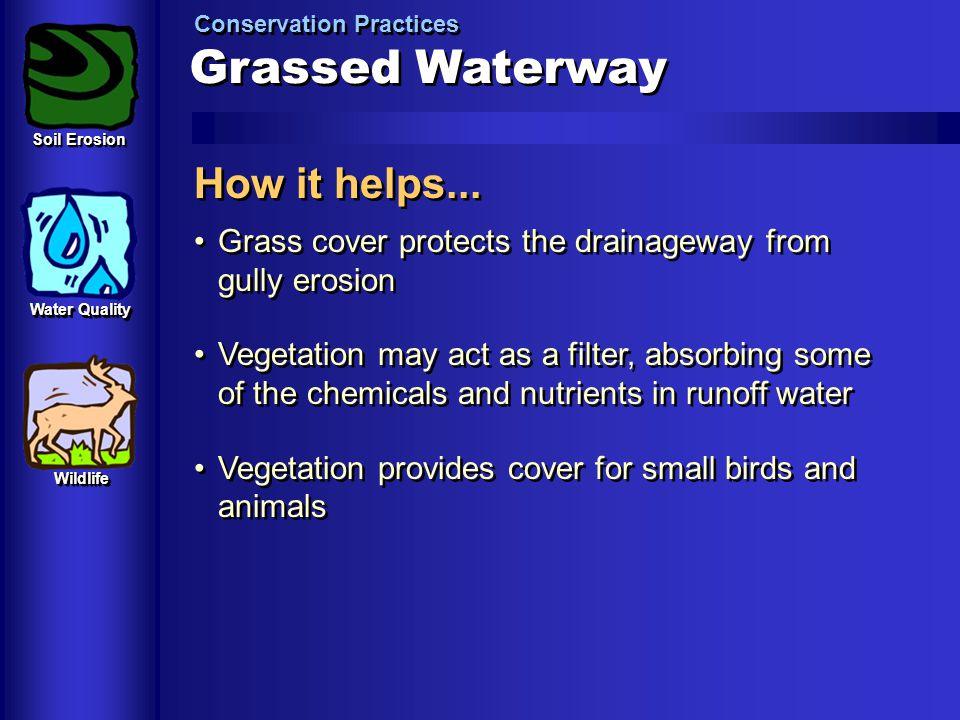 Grassed Waterway How it helps...