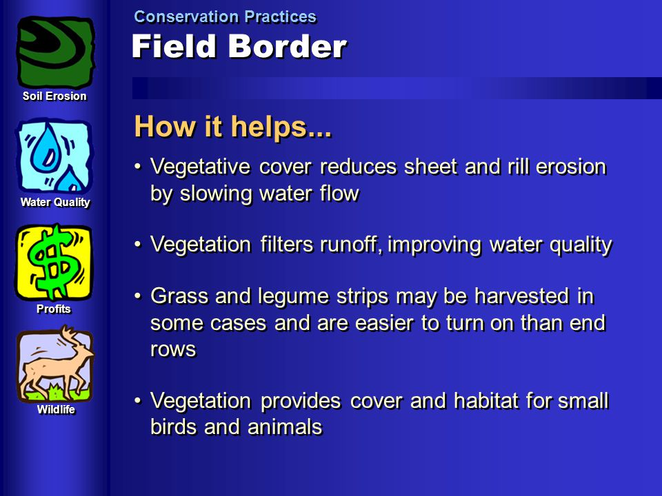 Field Border How it helps...