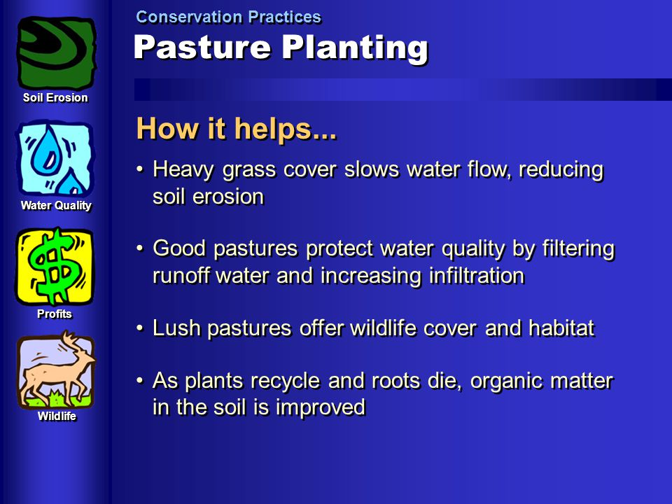 Pasture Planting How it helps...