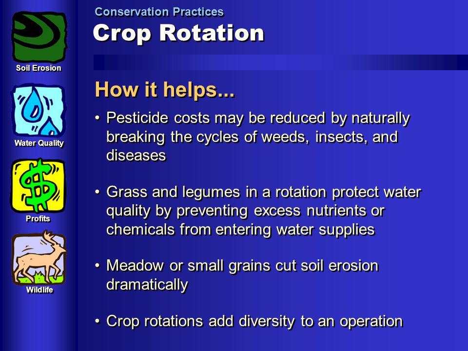 Crop Rotation How it helps...