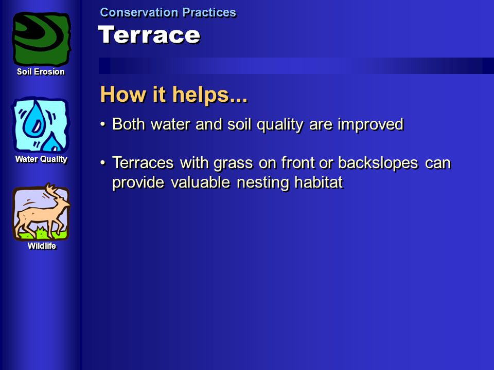 Terrace How it helps... Both water and soil quality are improved