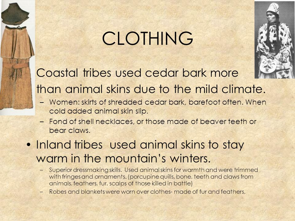 CLOTHING Coastal tribes used cedar bark more