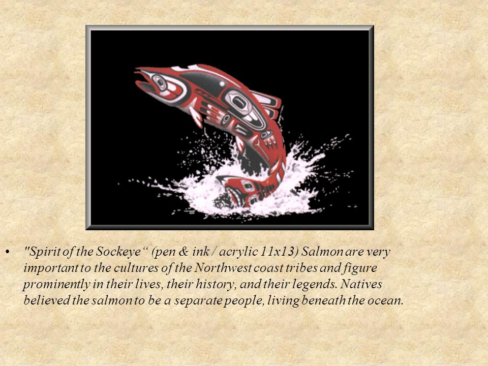 Spirit of the Sockeye (pen & ink / acrylic 11x13) Salmon are very important to the cultures of the Northwest coast tribes and figure prominently in their lives, their history, and their legends.