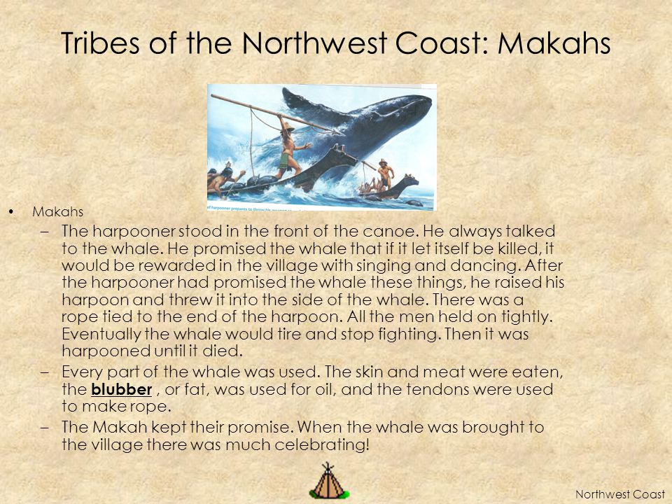 Tribes of the Northwest Coast: Makahs