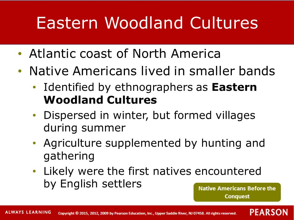 Eastern Woodland Cultures