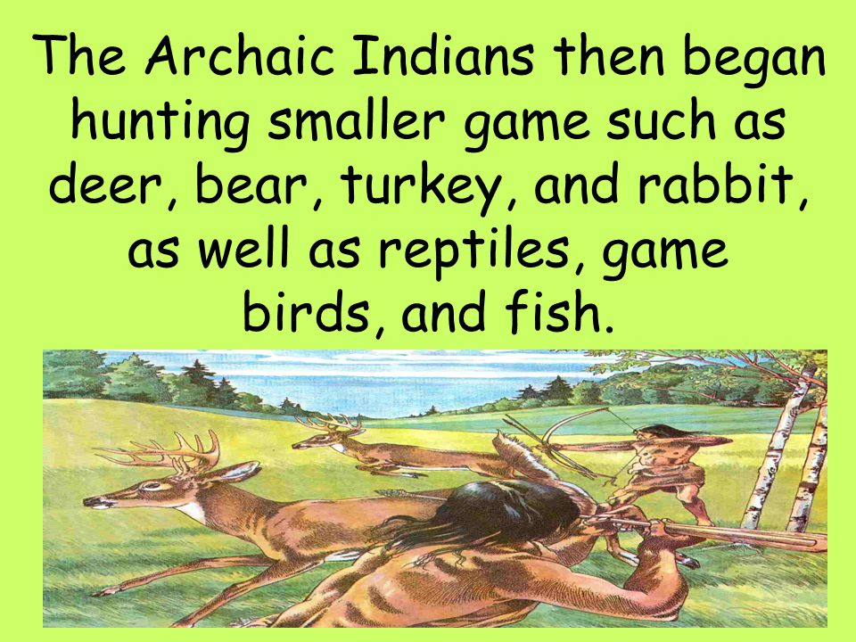 The Archaic Indians then began hunting smaller game such as deer, bear, turkey, and rabbit, as well as reptiles, game birds, and fish.