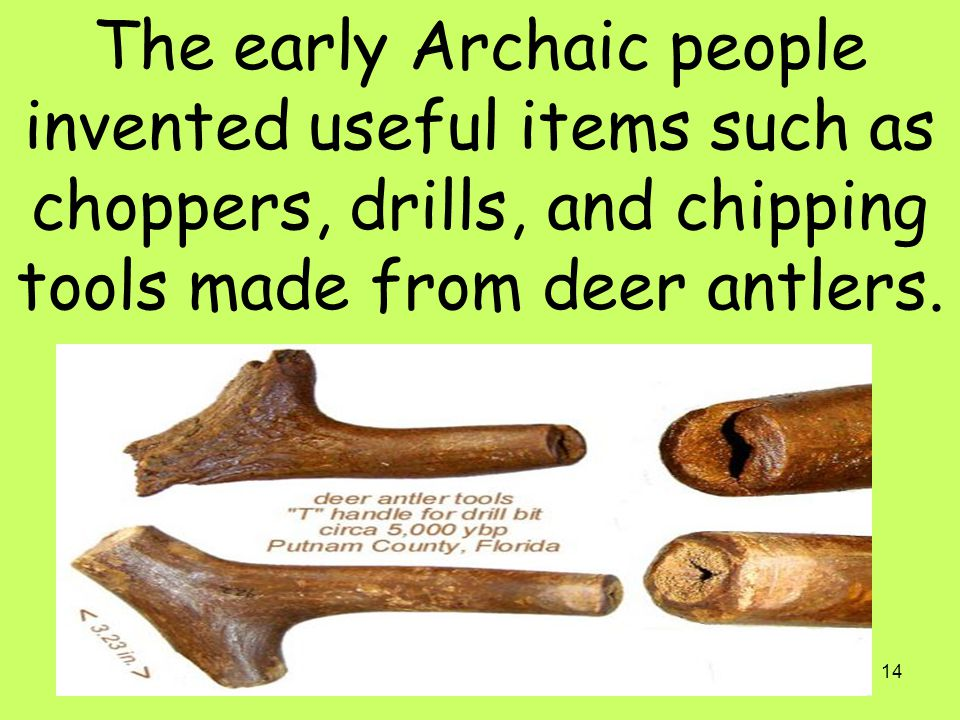 The early Archaic people invented useful items such as choppers, drills, and chipping tools made from deer antlers.