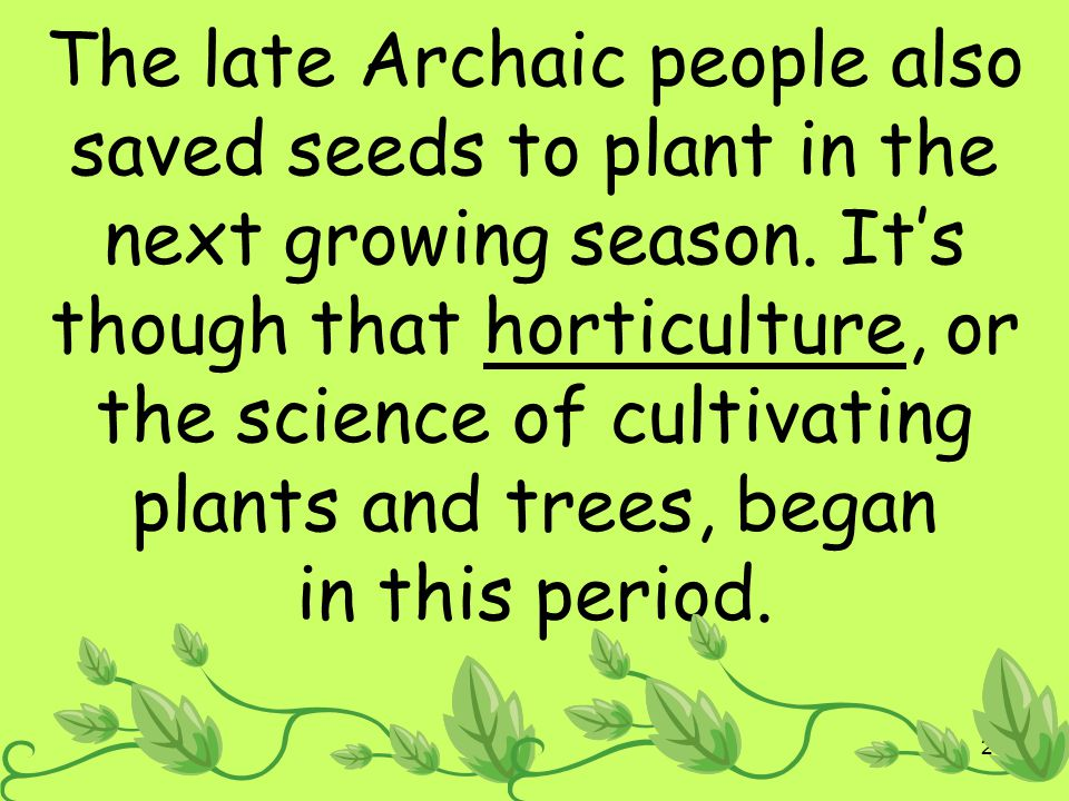The late Archaic people also saved seeds to plant in the next growing season.