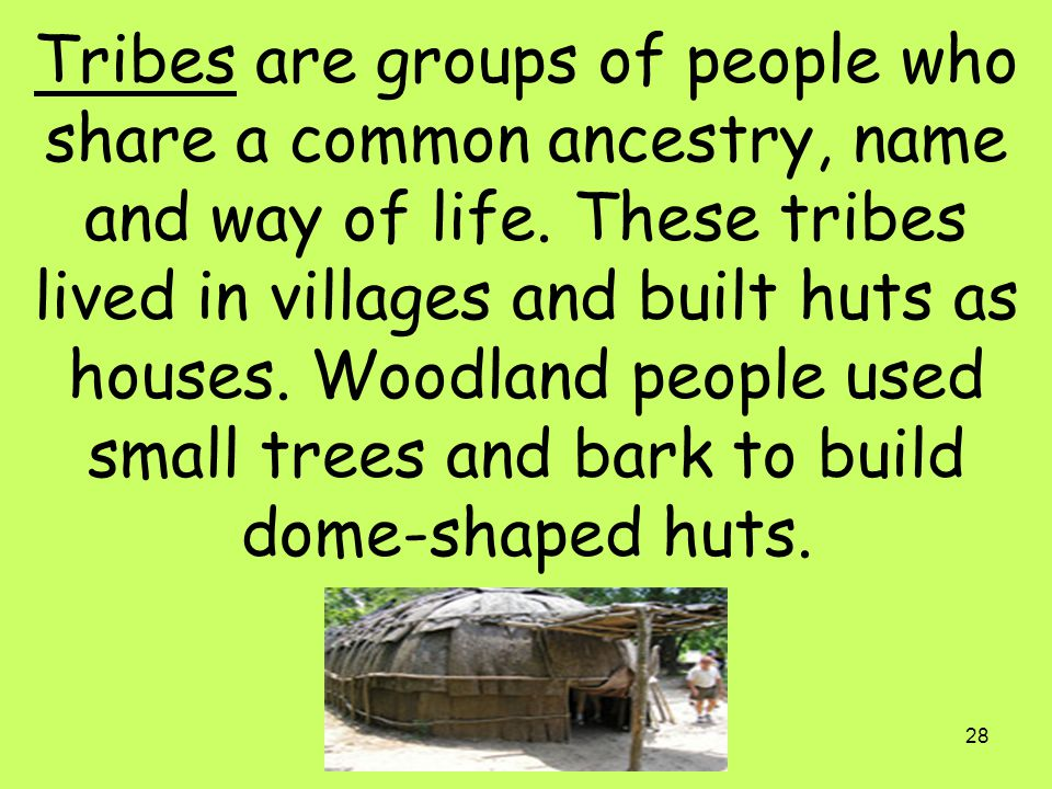 Tribes are groups of people who share a common ancestry, name and way of life.