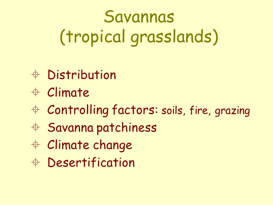 Savannas (tropical grasslands)