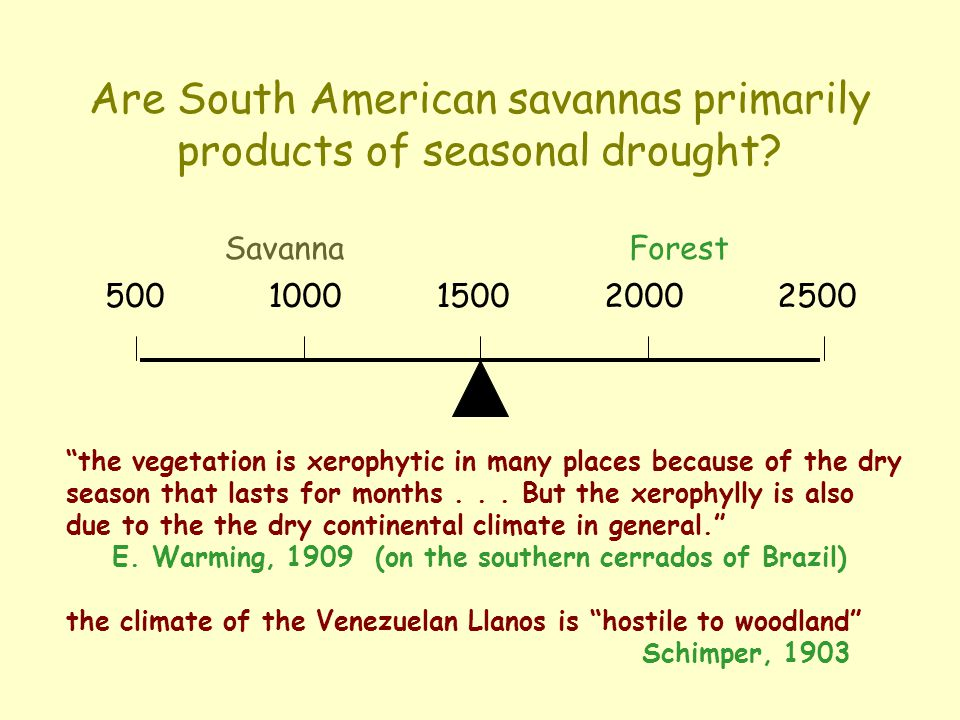 Are South American savannas primarily products of seasonal drought