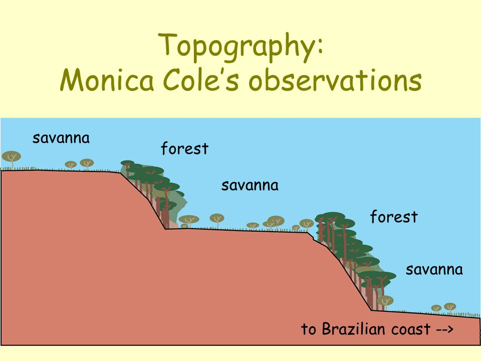 Topography: Monica Cole's observations