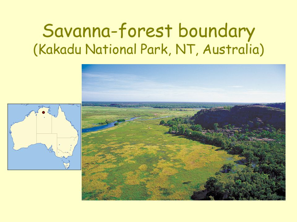 Savanna-forest boundary (Kakadu National Park, NT, Australia)