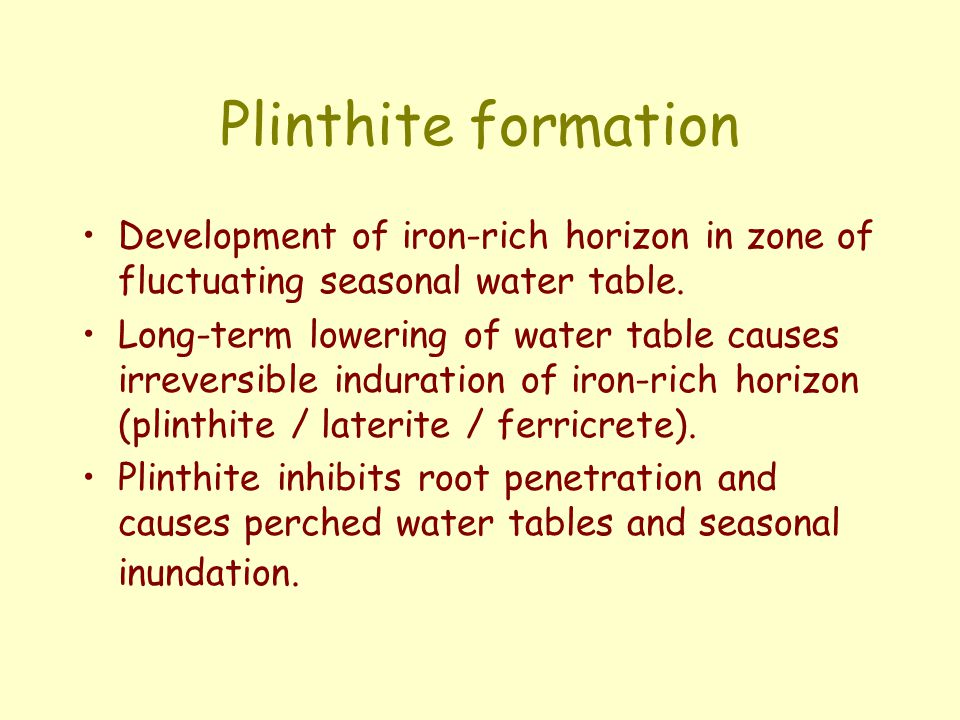 Plinthite formation Development of iron-rich horizon in zone of fluctuating seasonal water table.