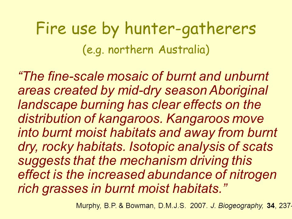 Fire use by hunter-gatherers (e.g. northern Australia)