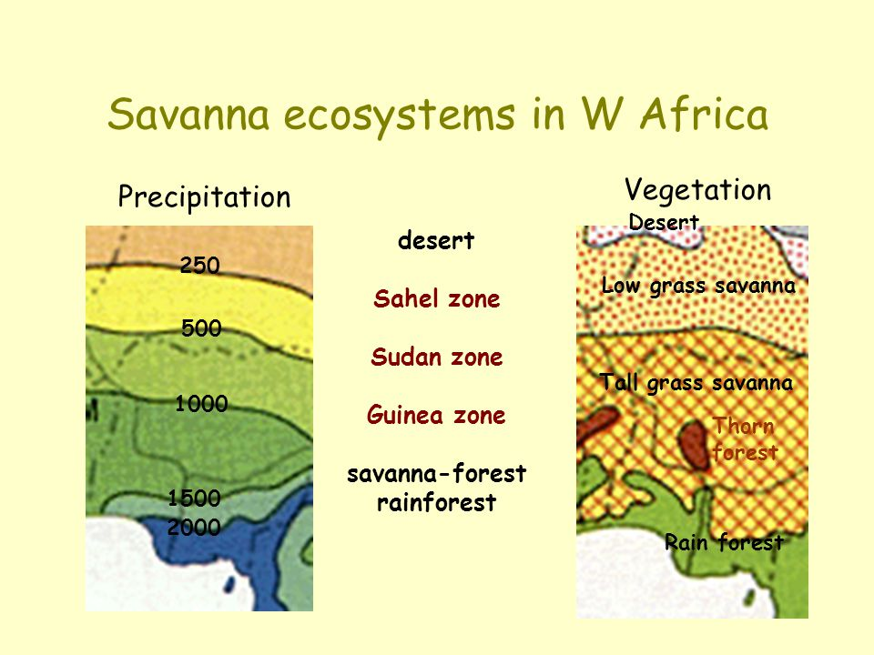 Savanna ecosystems in W Africa