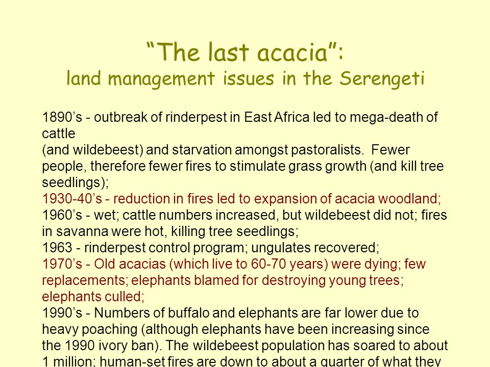 The last acacia : land management issues in the Serengeti