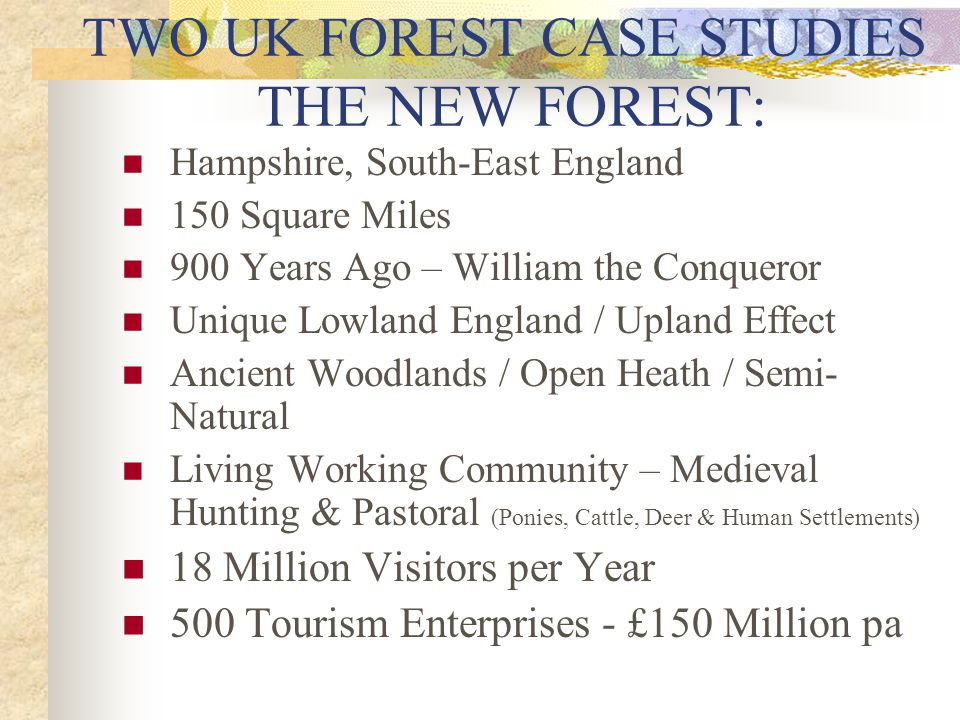 TWO UK FOREST CASE STUDIES THE NEW FOREST: