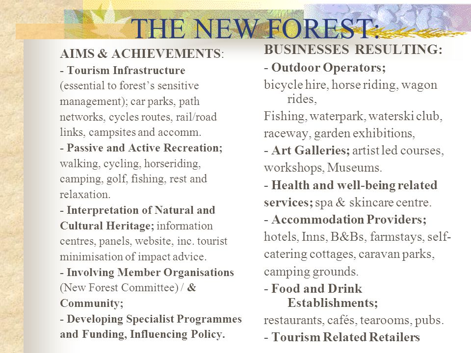 THE NEW FOREST: BUSINESSES RESULTING: AIMS & ACHIEVEMENTS: