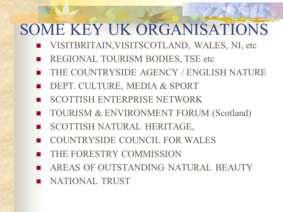 SOME KEY UK ORGANISATIONS