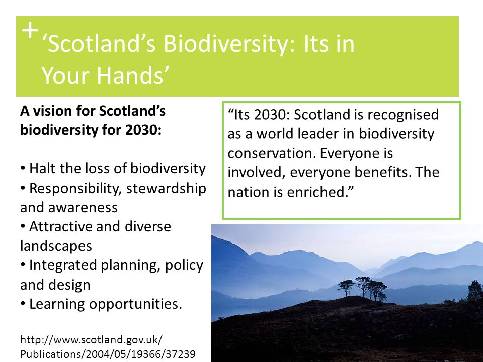 + 'Scotland's Biodiversity: Its in Your Hands'