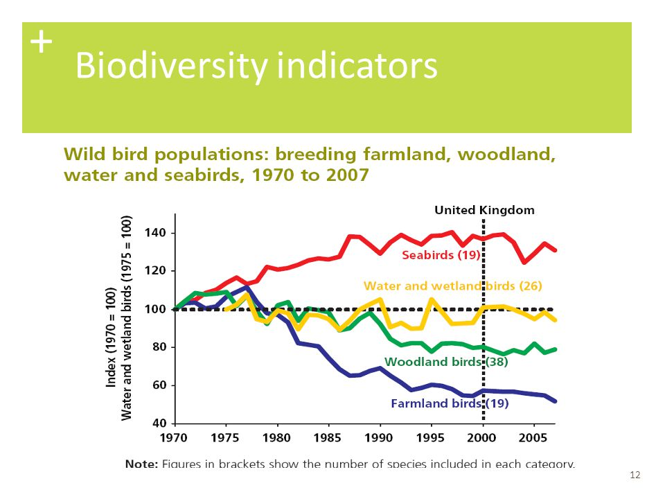 + Biodiversity indicators