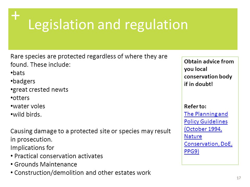 + Legislation and regulation