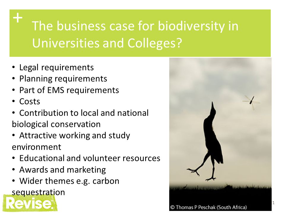 + The business case for biodiversity in Universities and Colleges