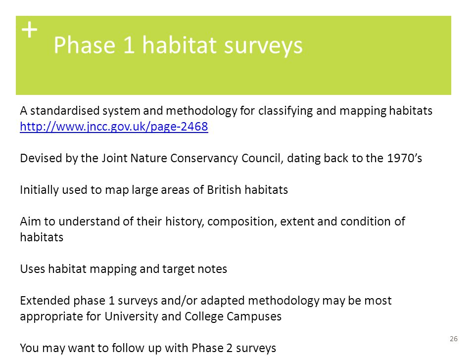 + Phase 1 habitat surveys